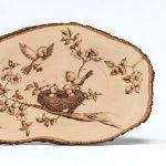 WEB-Bird-Nest-s